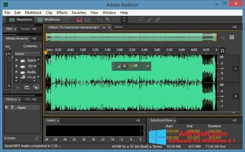 Ekran görüntüsü Adobe Audition CC Windows 8.1