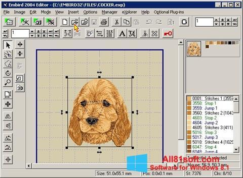 Ekran görüntüsü Embird Windows 8.1