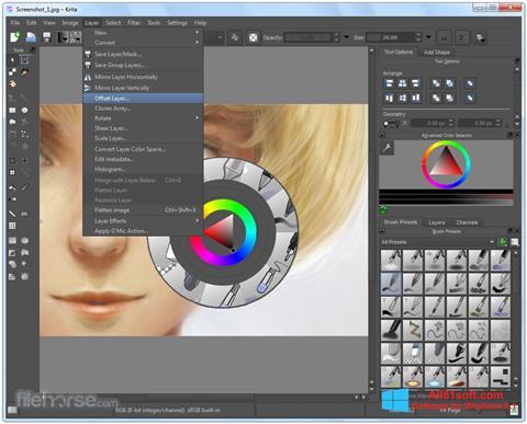 Ekran görüntüsü Krita Windows 8.1