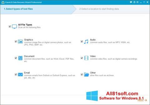 Ekran görüntüsü EaseUS Data Recovery Wizard Windows 8.1