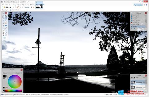 Ekran görüntüsü Paint.NET Windows 8.1