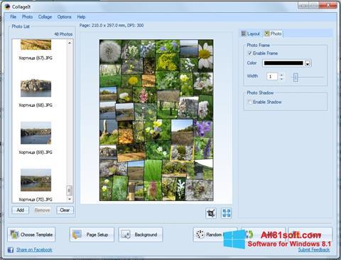 Ekran görüntüsü CollageIt Windows 8.1