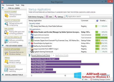 Ekran görüntüsü Reg Organizer Windows 8.1