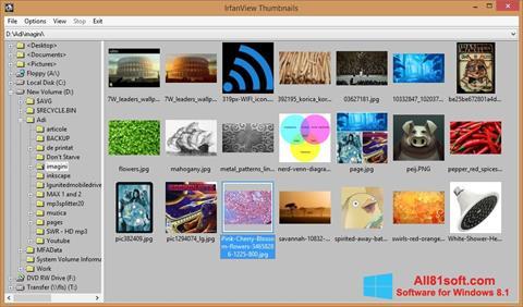 Ekran görüntüsü IrfanView Windows 8.1